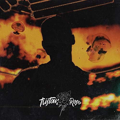 Tristan Rose