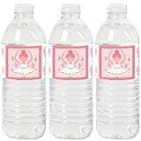 Big Dot of Happiness Tutu Cute Ballerina - Ballet Birthday Party or Baby Shower Water Bottle Sticker Labels - Set of 20