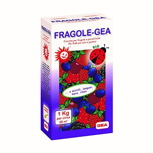 GEA Fragole Concime Biologico per Fragole e Frutti di Bosco
