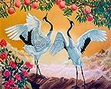 PPOI Ölfarbe nach Zahlen Kranich Färbung nach Zahlen Tiere Bild handbemalt Set Wandkunst Wohnkultur A14 40x50cm