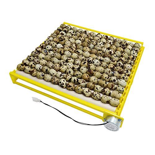 Incubadora de huevos de diseño HopeU5 tipo rodillo 13 tubos bandeja g