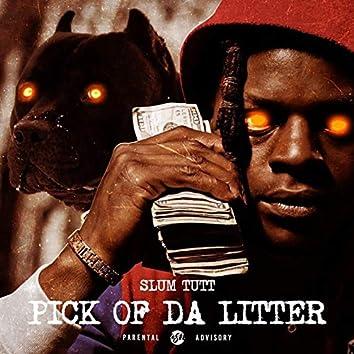 Pick of da Litter