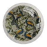 OLEEKA Las manijas del cajón tiran Las perillas Decorativas del gabinete Manija del cajón del tocador 4 Piezas,Pavo Real clásico Flor Animal