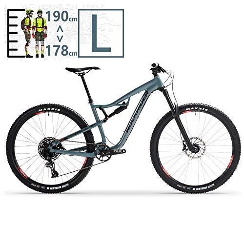 QMMD Adulto Bicicleta Montaña 29 Pulgadas, Bicicleta Doble