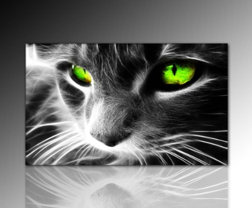 Wandbild XXL (Black Cat 60x100 cm) Deko Bild auf Leinwand. Ausführung schöner Kunstdruck auf echter Leinwand und Keilrahmen. Bild Motiv (Katze Augen schwarz grün weiß) Made in Germany