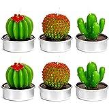 NANAOUS Velas de té de cactus especializadas, hechas a mano delicadas velas para el hogar, para fiestas de cumpleaños, bodas, regalo para Navidad (NO.2)