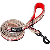 Leashboss Double-Thick 6Ft Reflective Leash with Padded Handle, Pattern Collection, Strong Leash for Large Dogs and Medium Dogs (6 Foot x 1 Inch Wide, Mountain Pattern)