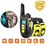 Best 2 Dogs Collars - ACAPETTY Dog Collar 2 Dog Training Collar Review