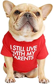 French Bulldog Dog Shirt for Pet Clothes Puppy T-Shirts Cat Tee Breathable Stretchy Costumes Medium