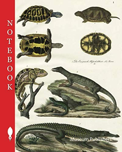 Notebook: Amphibians and reptiles: river turtles, tortoises, chameleons, lizards, crocodiles, monitor lizards, 1. The European River Turtle, 2. The ... (Pick up your pen and write, Band 10551)
