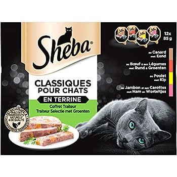 Sheba Terrines Classiques - Barquettes pour chat adulte, Coffret traiteur, 72 barquettes de 85g