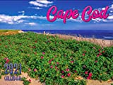2021 Cape Cod and The Islands Wall Calendars (Cape Cod)