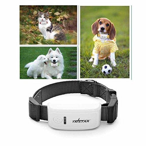 TKSTAR Mini Rastreador GPS para Mascotas, GPS en Tiempo Real, gsm/GPRS/GPS, Rastreador de Seguridad para Mascotas, Largo Tiempo en Espera, Localizador con Alarma SOS