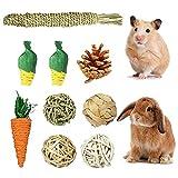 9 Piezas Juguetes Masticar Hámster, Juguete Molar Conejillo Indias, Juguete Molar para el Cuidado Los Hámster, Juguetes para Masticar Roedores, para Chinchilla, Guinea Pig, Conejos, Hámster