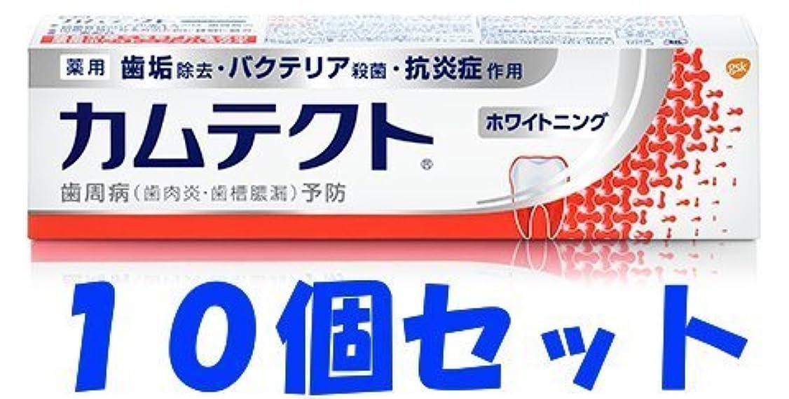 宿少ないサラダ【10個セット】カムテクト ホワイトニング 105g
