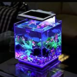 Aqua Innovations Aquarium Kit (Include Filter + LED Light) (15L - Cube)