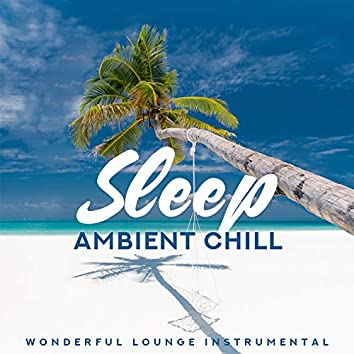 Sleep Ambient Chill: Wonderful Lounge Instrumental - Tropical Dream, Calm Mind & Summer Time
