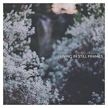 Living in Still Frames