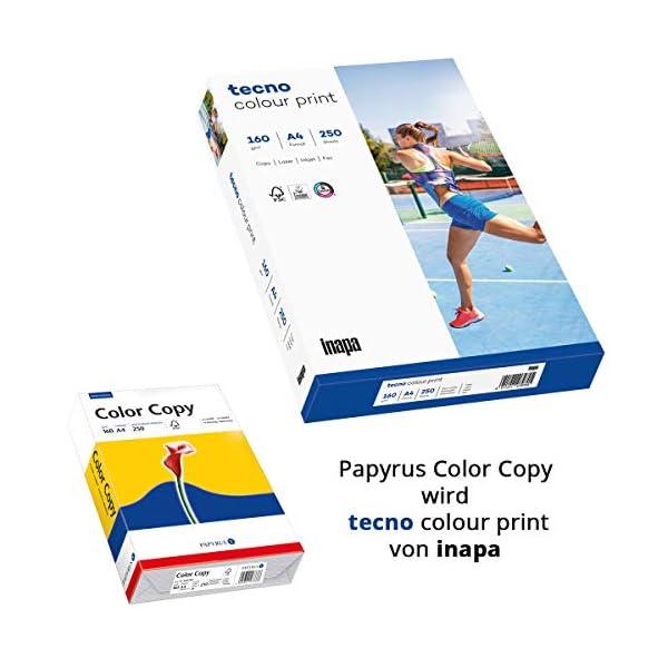 Papyrus Color Copy A4 A4 (210×297 mm) Satén Blanco - Papel (A4 (210x297 mm), Impresión láser/inyección de tinta, Satén… : 160 g/m2 A4 blanco Para fotocopiadoras, láser, fax y inyección de tinta