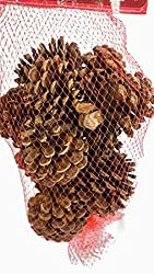 Whole Foods Market, Pine Cones Holiday Cinnamon Scented