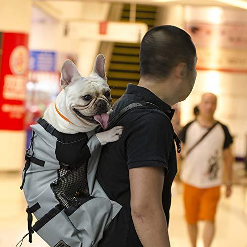 ZZQ Sac de Transport Respirant pour Chien pour Gros Chiens Golden Retriever Bulldog Sac à Dos Réglable Grand Chien Voyage Sacs Animaux Produits,Gray,XL