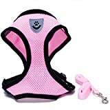 Locisne Mesh Tissu Dog Vest Harnais souple réglable confortable | Pet Chest Lead Walking Leash avec clip (Rose, Petit)