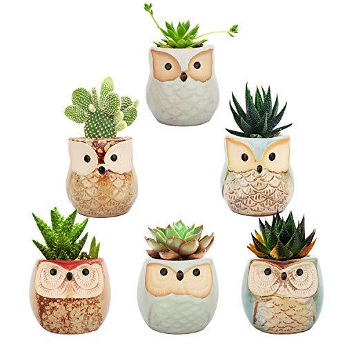 Lewondr Vaso da Fiori, [6 Pezzi] 2,5 Pollici Carino Mini Vaso di Gufo in Ceramica per Pianta Succulente Decorazione da Casa Tavolo Scrivania Ufficio - Multicolore
