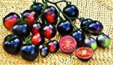Indigo Blue * Ambizu) Indigo Semillas híbridas Blue Tomato Pack Profesional 100 Semillas