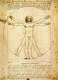 PalaceLearning Vitruvian Man von Leonardo Da Vinci Poster