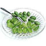 Cucamelon Mexican Sour Gherkin Melothria scobra Seeds 60+ Mini Watermelon Fruit Vegetables Non-GMO Seeds for Home Garden Yards Planting