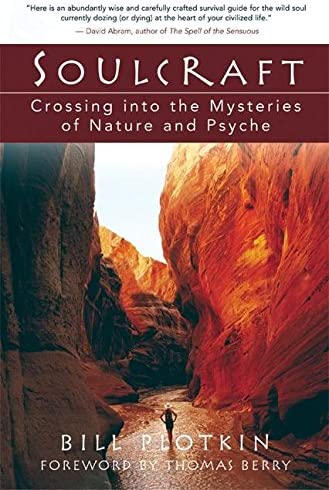 Soulcraft Crossing into the Mysteries of Nature and Psyche product image