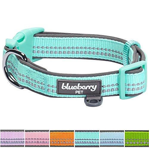 Blueberry Pet Soft & Safe 3M Reflective Dog Collar