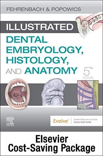 Compare Textbook Prices for Illustrated Dental Embryology, Histology, and Anatomy - Text and Student Workbook Package 5 Edition ISBN 9780323733564 by Fehrenbach RDH  MS, Margaret J.,Popowics, Tracy