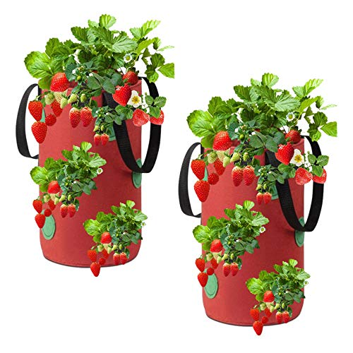 Strawberry Grow Bags, 2 Pack Hanging Non-woven Fabric Gardens Strawberry Planting Growing Bag with 13 Holes, Strawberry Plant Grow Bags for Garden Strawberries, Herbs, Flowers(20x35cm) (Red)