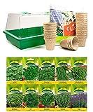 mgc24® Zimmergewächshaus Greenhouse - Anzuchtschale mit Deckel und Belüftung -