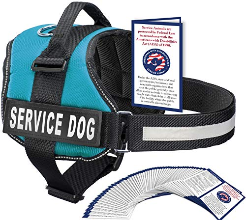 Service Dog Vest With Hook and Loop Straps and Handle - Harness is Available in 8 Sizes From XXXS to XXL - Service Dog Harness Features Reflective Patch and Comfortable Mesh Design (Blue, XXL)