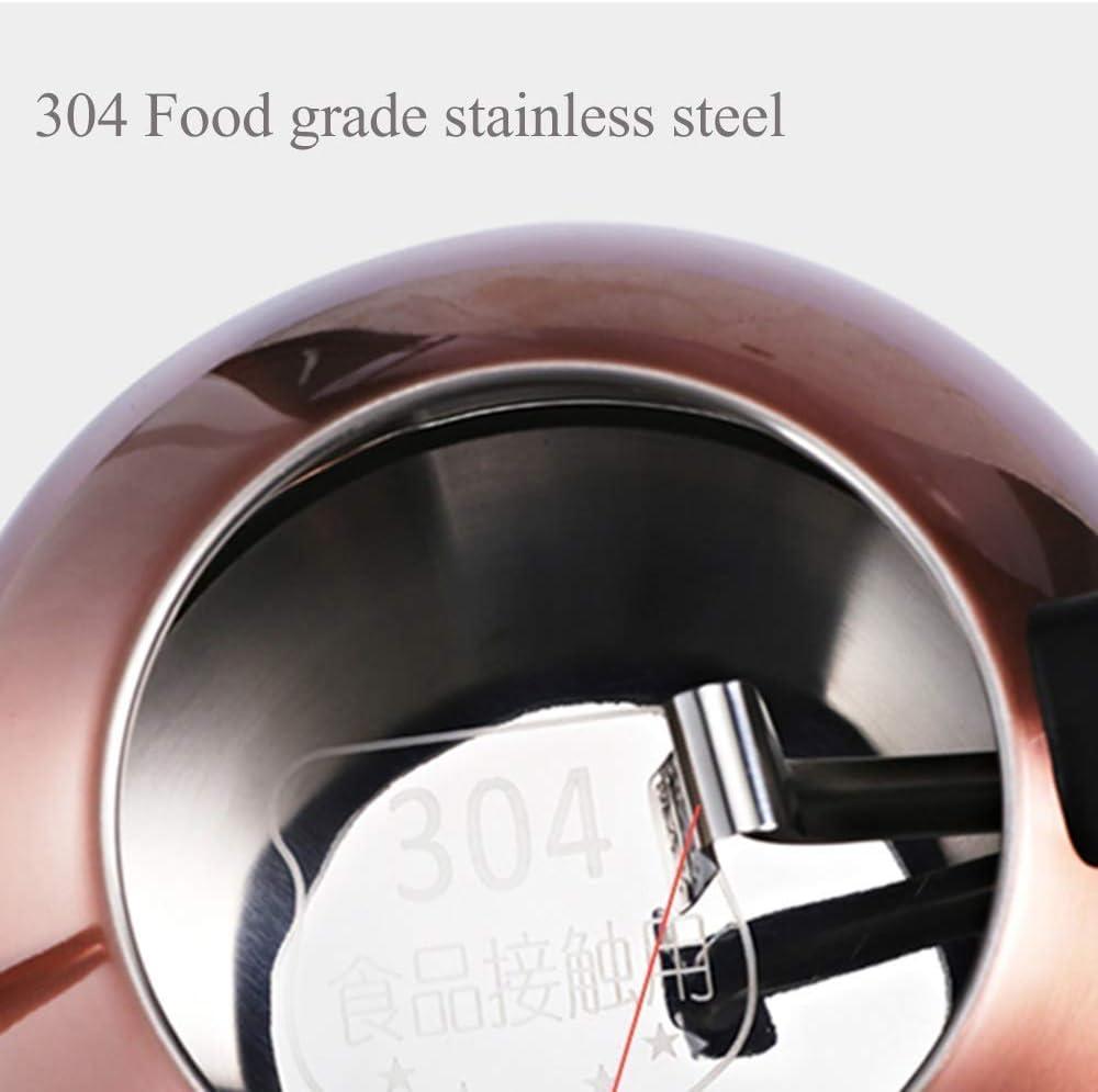 1L retro print waterkoker Eco 1000 Watt waterkoker waterkoker met intern deksel en bodem in roestvrij staal (kleur: metallic) Metallic