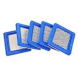 Haofy 5PCS Filtre à air pour Tondeuse Briggs & Stratton 491588 491588S 399959 John...