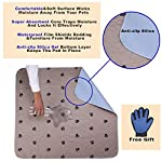 """SincoPet Reusable Pee Pad + Free Puppy Grooming Gloves/Quilted, Fast Absorbing Machine Washable Dog Whelping Pad/Waterproof Puppy Training Pad 2Pack(31""""X36"""")/Housebreaking Absorption Pads 10"""