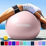 arteesol Gymnastikball Pilates Ball 45cm / 55cm / 65cm / 75 cm inkl. Pumpe Anti-Burst Sitzball für Yoga Exercise Fitness Physiotherapie (5 Farben) (Hellrosa, 65cm)
