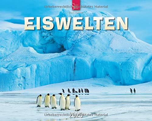 Eiswelten: Original Stürtz-Kalender 2020 - Großformat-Kalender 60 x 48 cm