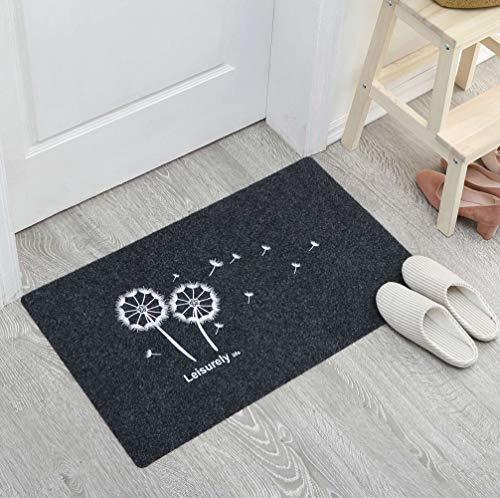 Lindong Türmatte Fußabtreter Eingangsmatte Sauberlaufmatte Schmutzfangmatte Anti-Rutsch Füßmatte Türvorleger viele Motiv wählbar 40x60cm Grau Löwenzahn