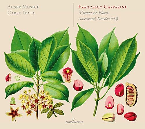 Gasparini/Mirena & Floro