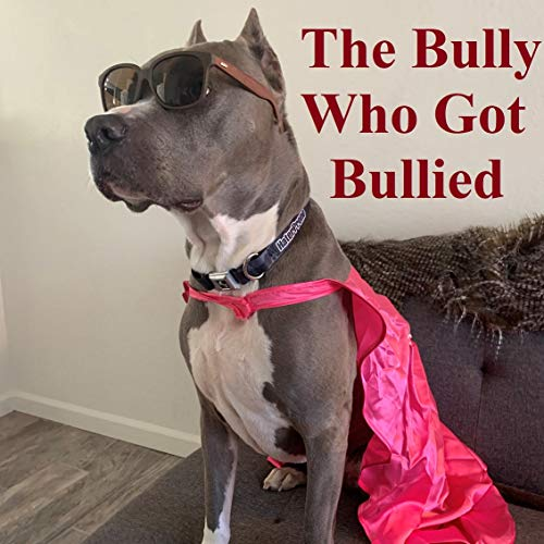 The Bully Who Got Bullied: Ike The Super Bully (English Edition)