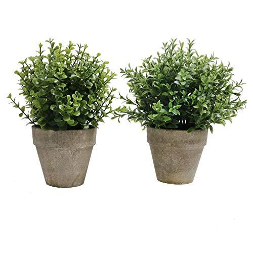 SHACOS 2er Set Pflanzen Künstlich Blumen Gras Kunstpflanze Bonsai Mini mit Topf Klein,Ideal für Tischdeko Haus Balkon Büro usw.