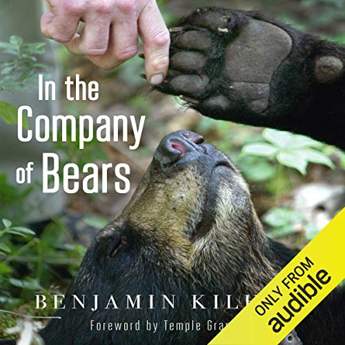 In the Company of Bears audiobook cover art