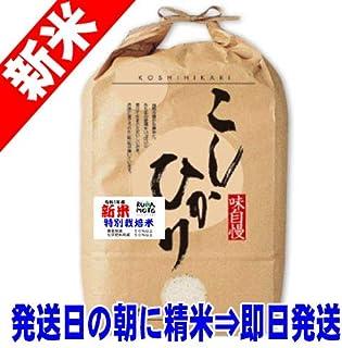 令和元年産 新米 熊本産 特別栽培米 コシヒカリ 5kg 天草地区指定 (白米精米(精米後約4.5kg))