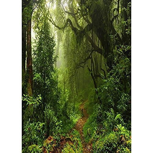 Accesorios de Fondo de fotografía de Vinilo Fondo de fotografía de Tema de Paisaje Accesorios de fotografía de Estudio A15 9x6ft / 2,7x1,8 m