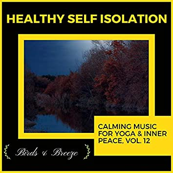 Healthy Self Isolation - Calming Music For Yoga & Inner Peace, Vol. 12