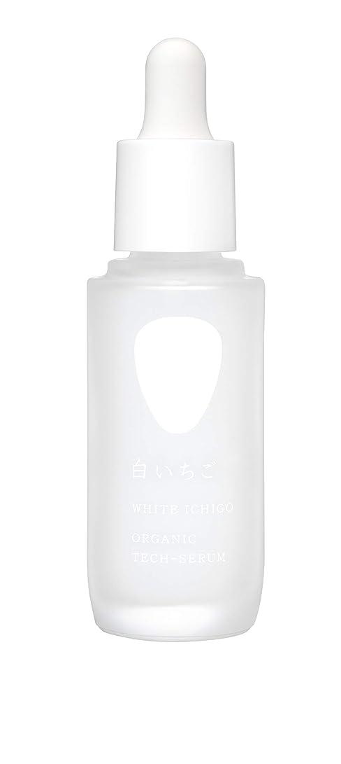 アクセシブル砂肌寒いWHITE ICHIGO(ホワイトイチゴ) オーガニック テック-セラム 30g